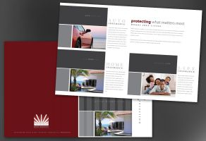 Insurance Agent Insurance Agency-Design Layout